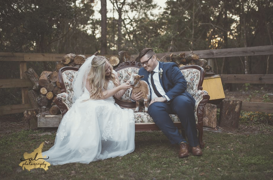 Bridle Oaks Barn - bride and groom on outdoor couch with baby goat