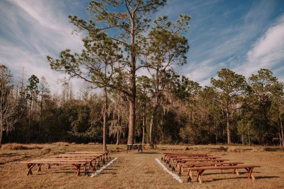 pine tree outdoor wedding venue clermont florida