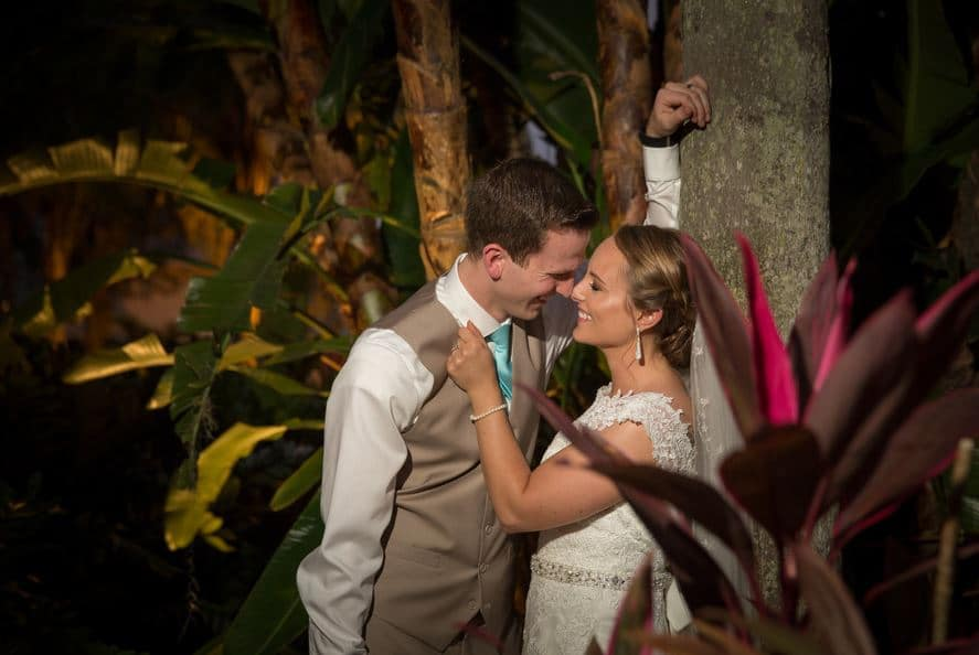 Paradise Cove - bride and groom under palm tree