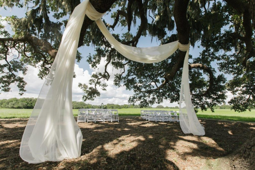 Villages Polo Club - White drapery completely transforms this old oak tree.