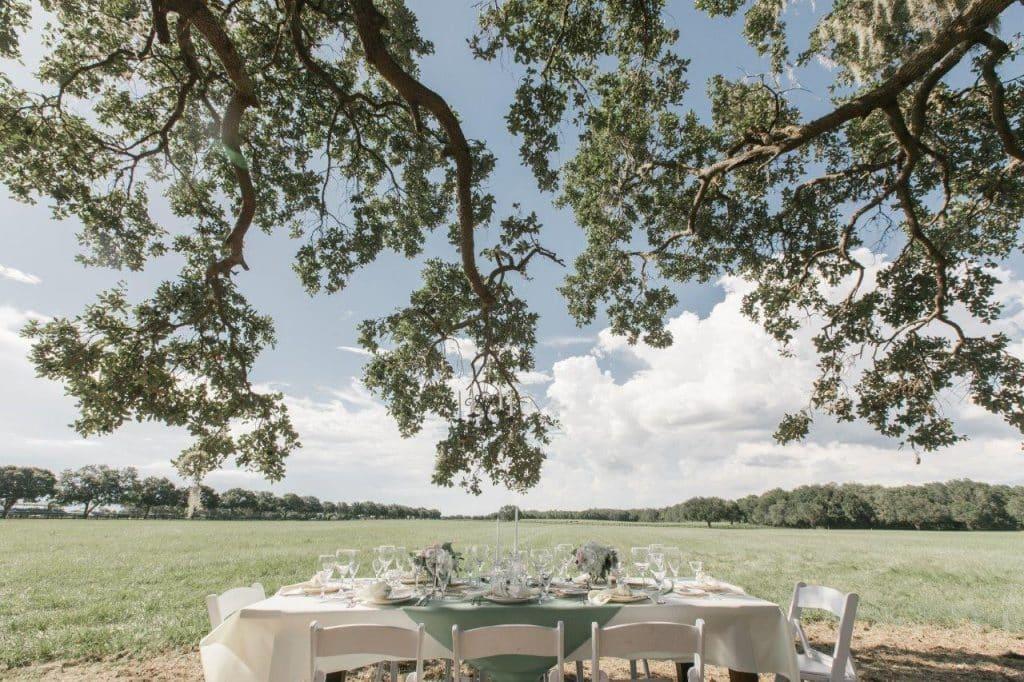 Villages Polo Club - outdoor reception under oak tree