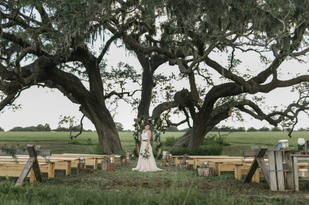 The Villages Polo Club - ceremony venue under old oak tree