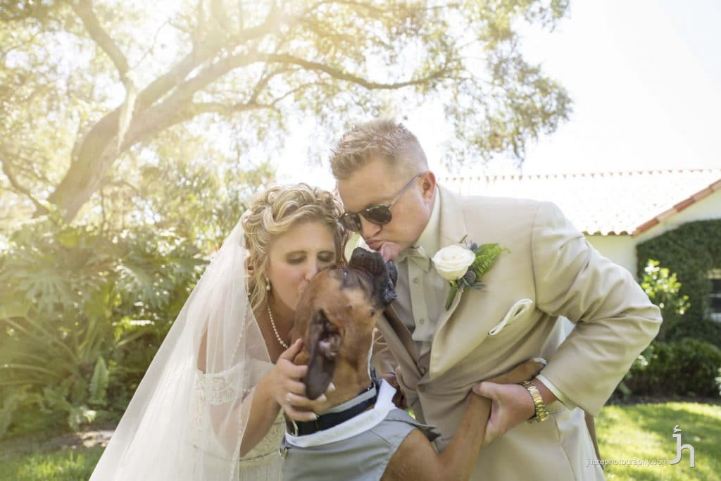 FairyTail Pet Care - bride and groom kissing dog