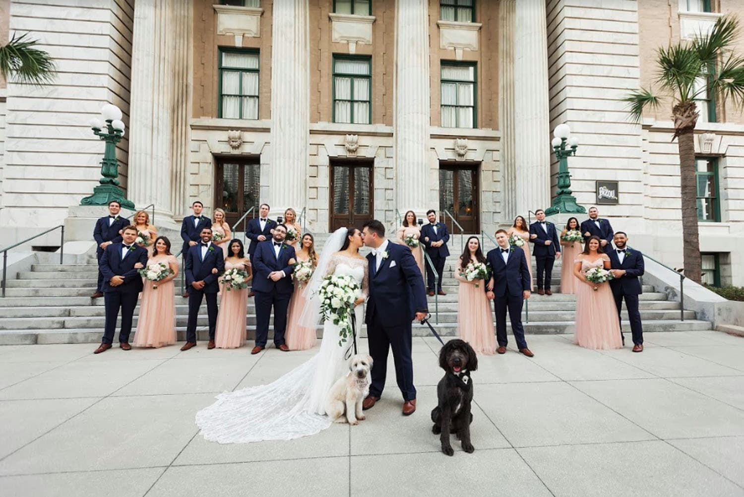FairyTail Pet Care - wedding party with dogs
