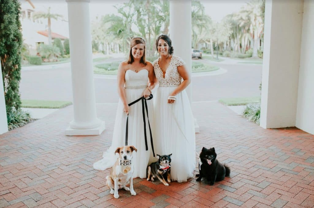 FairyTail Pet Care - two brides posing with their dogs