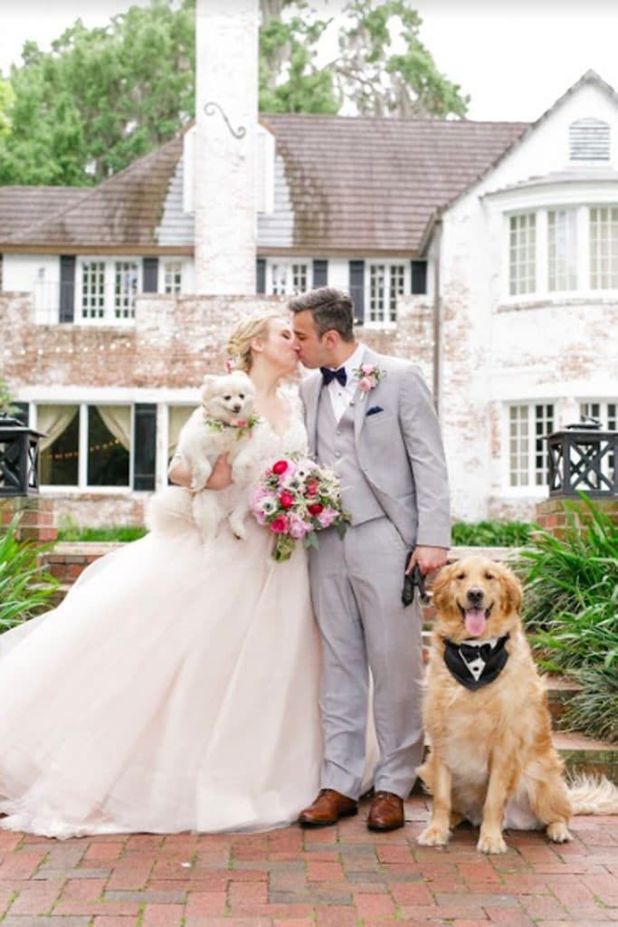 FairyTail Pet Care - bride and groom with dogs