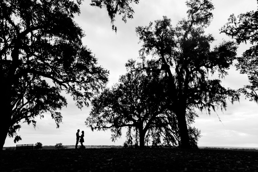 Steven Miller Photography - bride and groom and trees silhouetted against white sky
