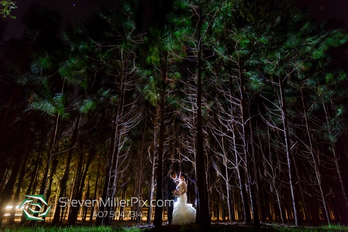 Steven Miller Photography - bride and groom in forest at night