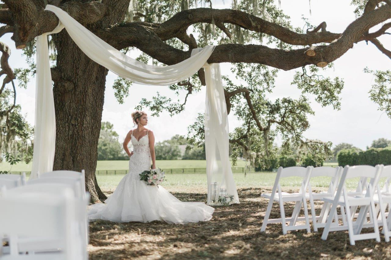 Bride posing under an oak tree with white drapery at The Villages Polo Club