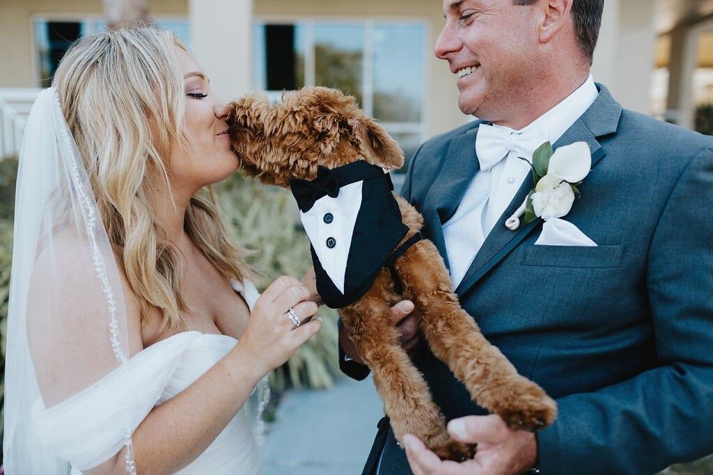 dog giving bride kisses