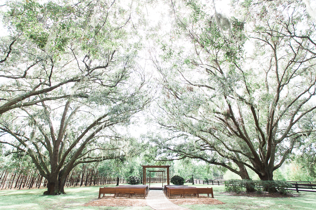 Club Lake Plantation - outdoor wedding ceremony with benches under sprawling oak trees