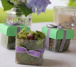 The Magnolia Company - moss makes a cute padding for wedding favor boxes