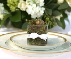 The Magnolia Company - moss-filled acrylic cube on place setting