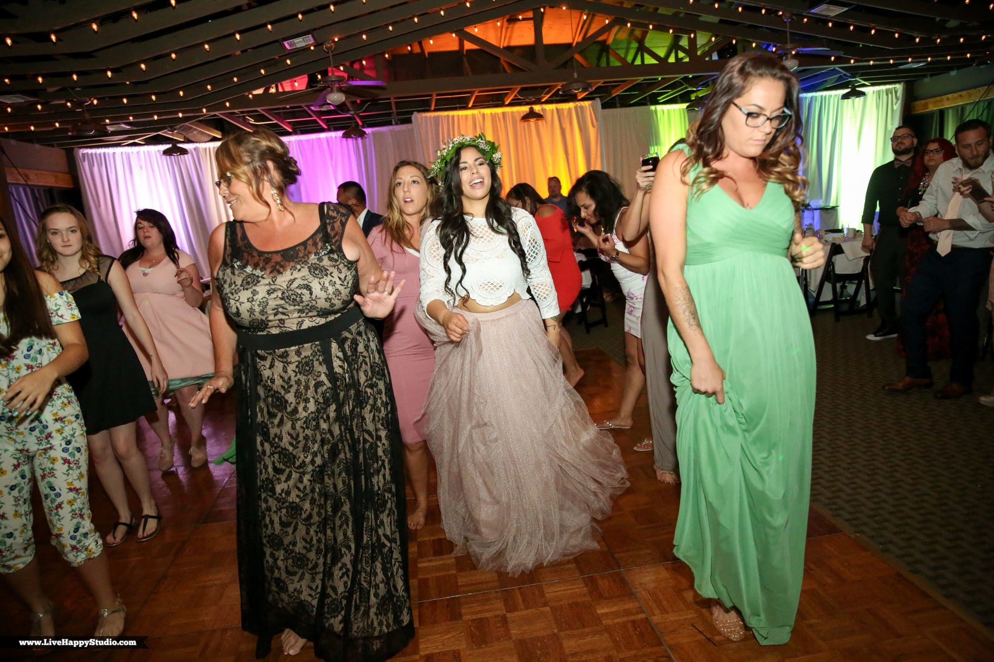 White Rose Entertainment - wedding guests doing a line dance