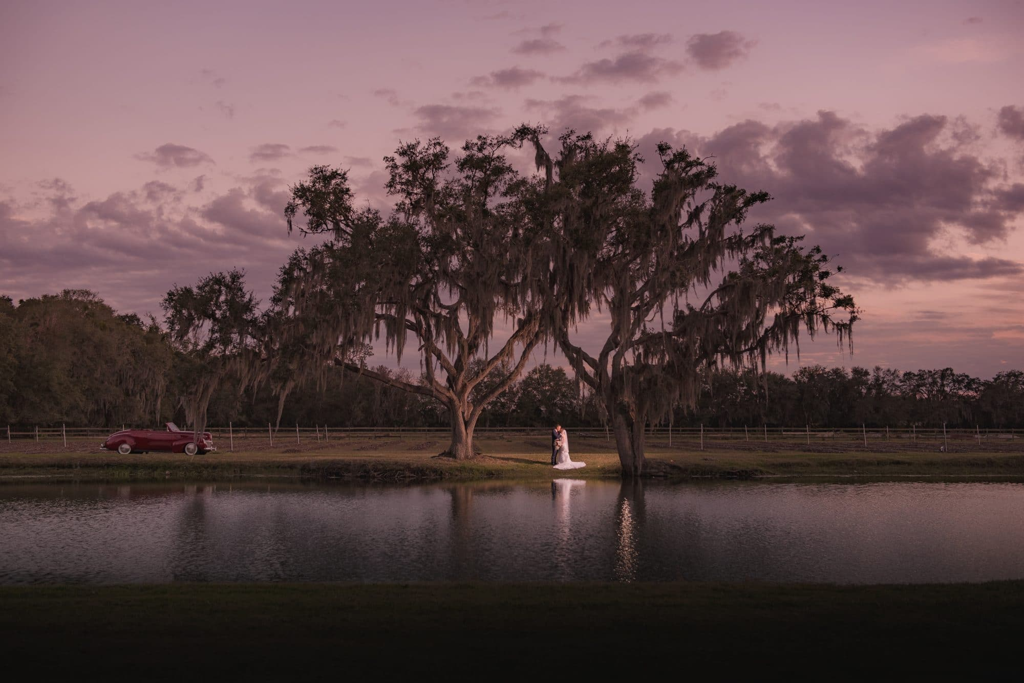 Bride and groom under tree at sunset.