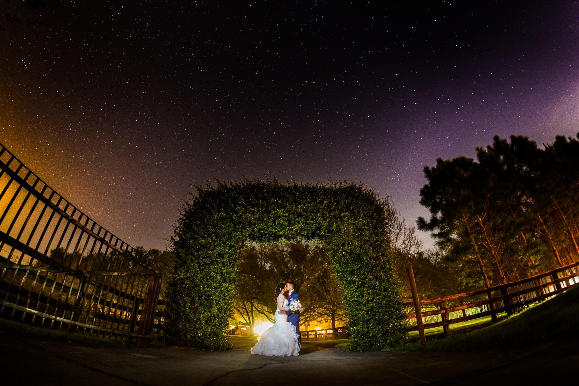 Steven Miller Photography - bride and groom kissing under vine archway with starry sky behind them
