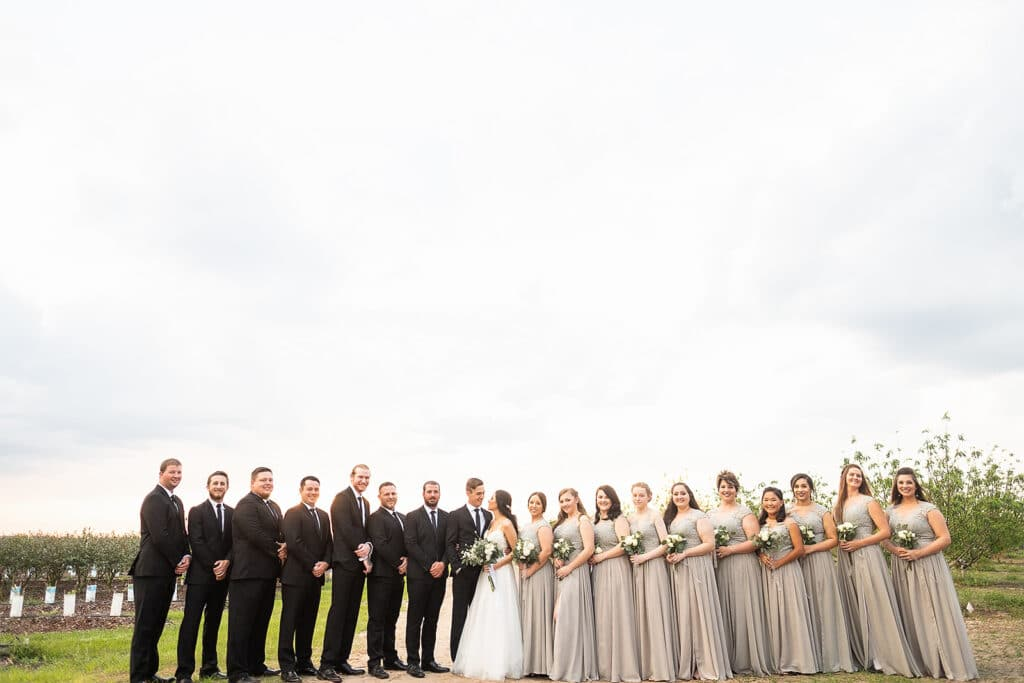 bridal party lined up, groomsmen on the left, bridesmaids on the right, bride and groom in center