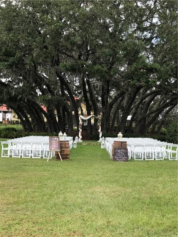 outdoor wedding set up with white chairs and large trees