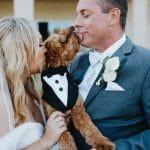 FairyTail Pet Care- 8 Tips (1)