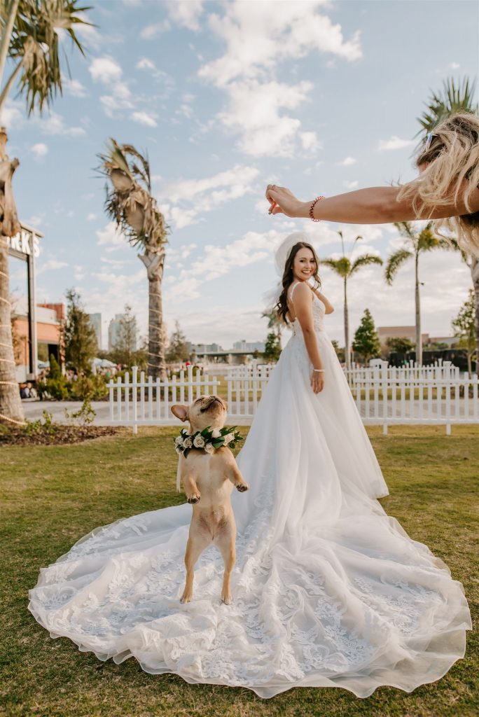 include your pet in your wedding, dog with flower necklace sitting on bride's train during pictures