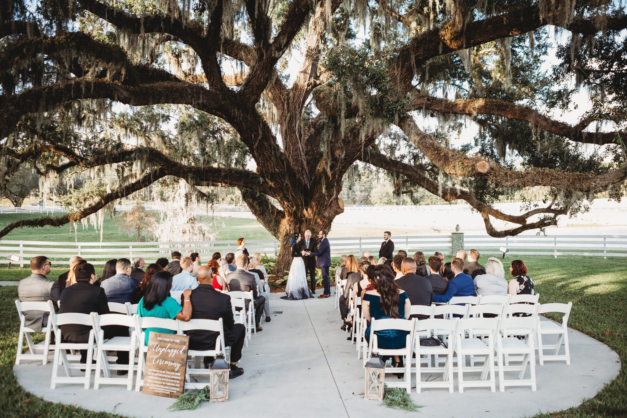 Rachel Doyle Photography - Unplugged wedding outside under a tree