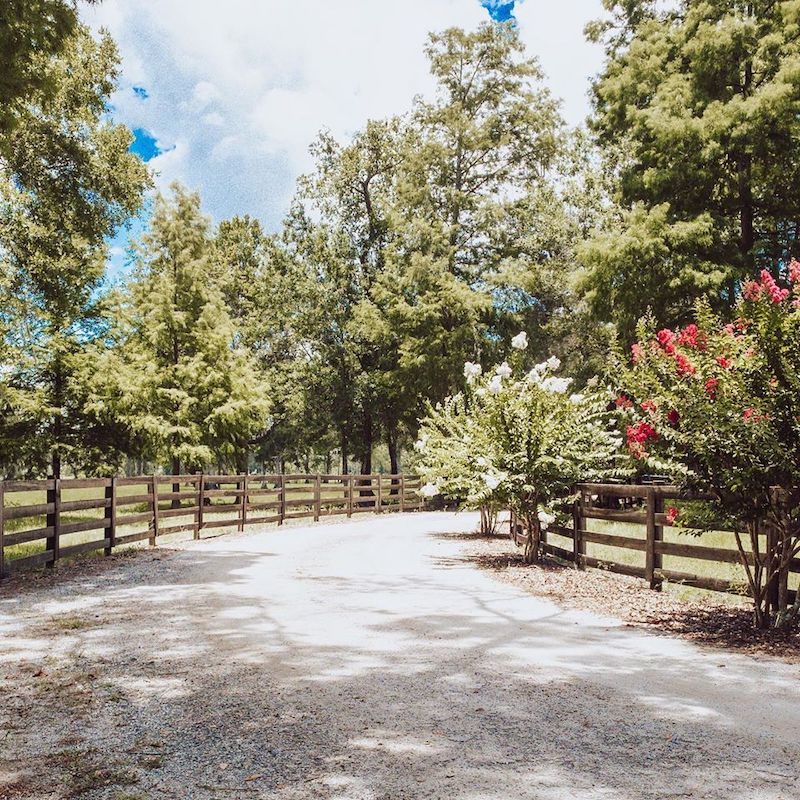 Cypress Creek Farmhouse country road