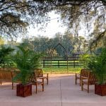 BLB Hacienda (2)