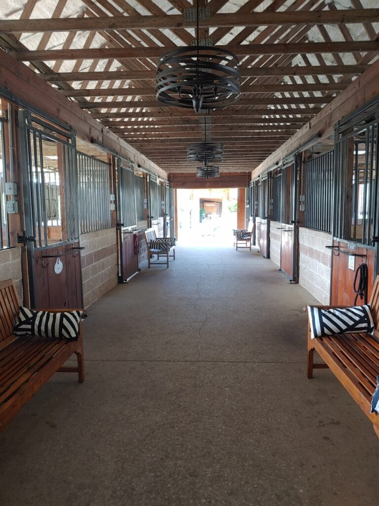 barn horse stall with benches