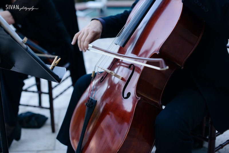 Music Remembrance string section performing during formal event