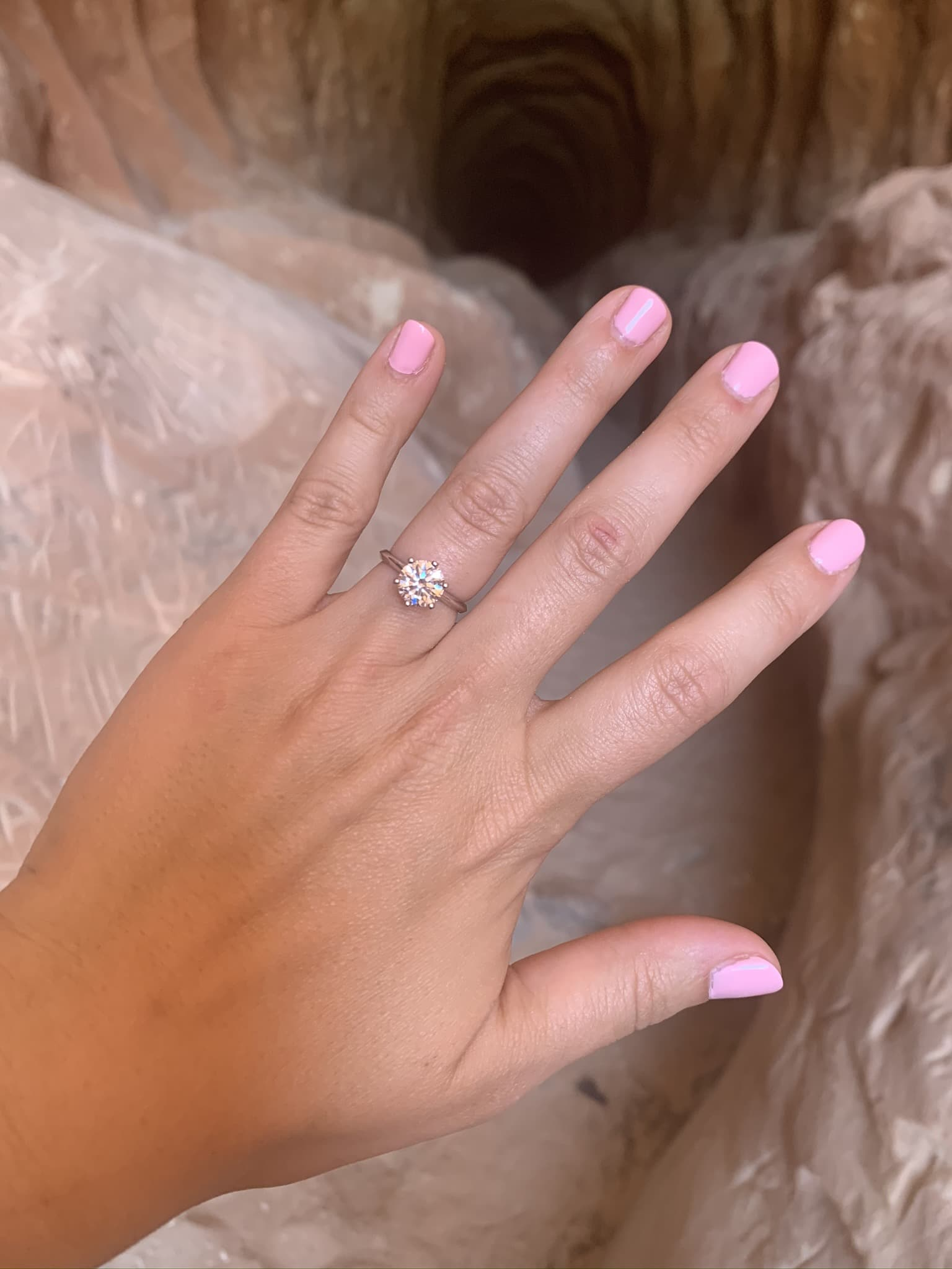 Zion National Park Marriage Proposal 13