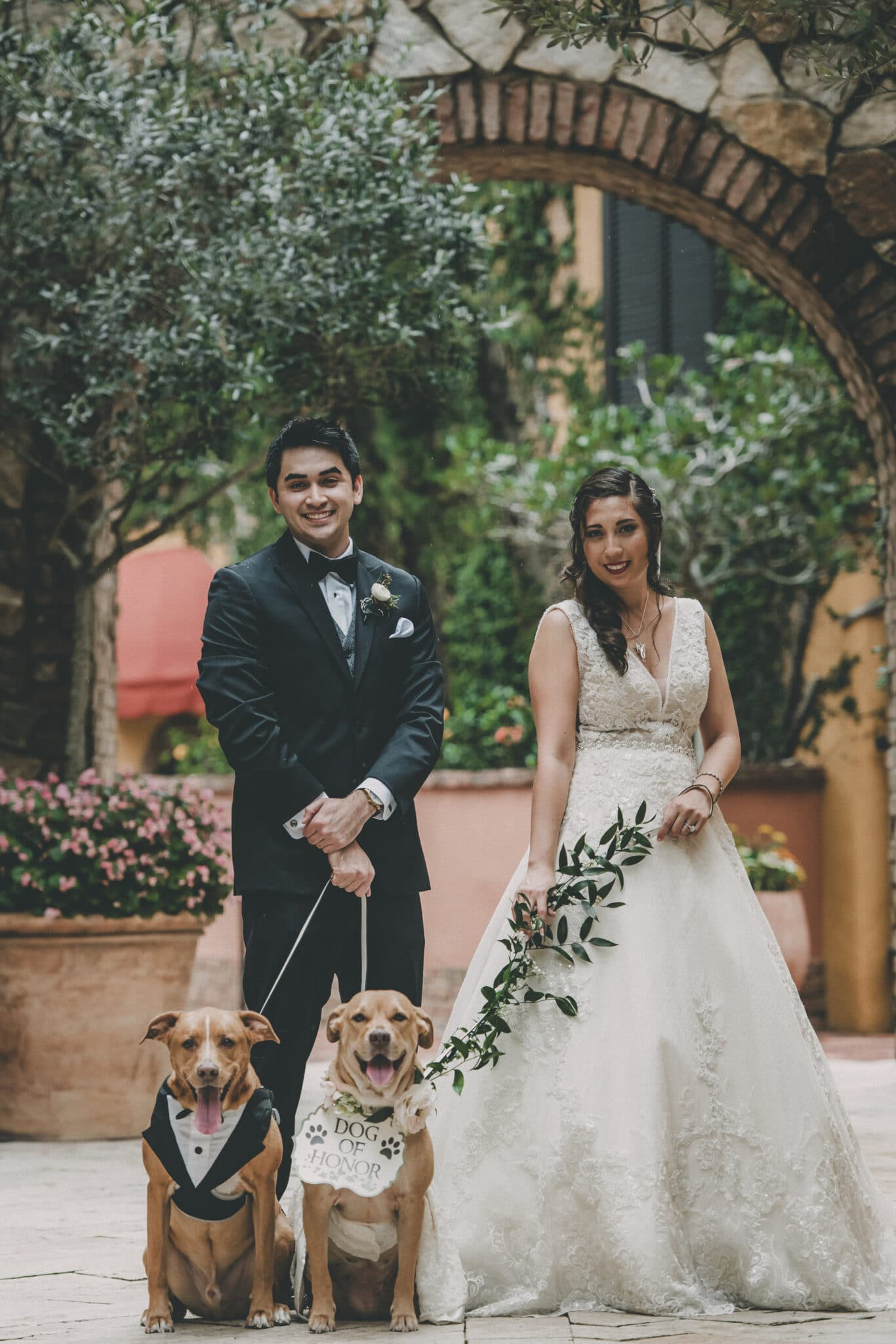 bride and groom outside with dogs dressed up