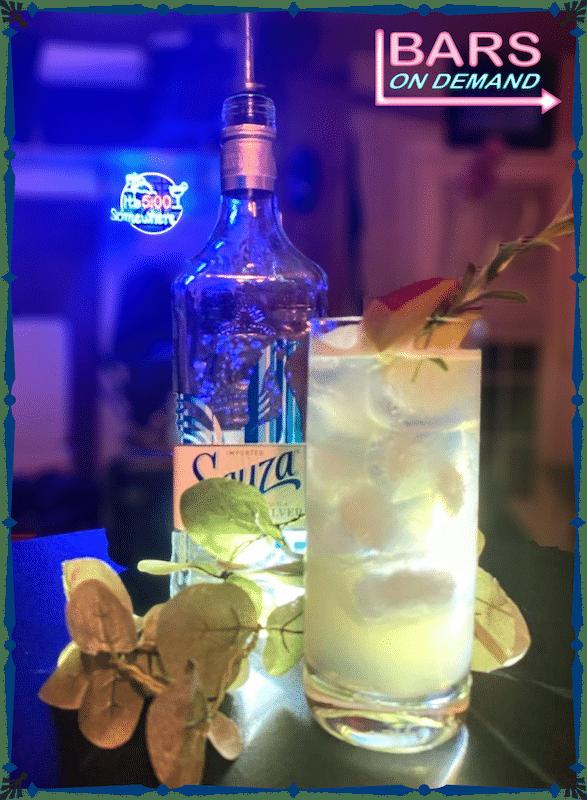 Sauza Martini prepared by Bars on Demand