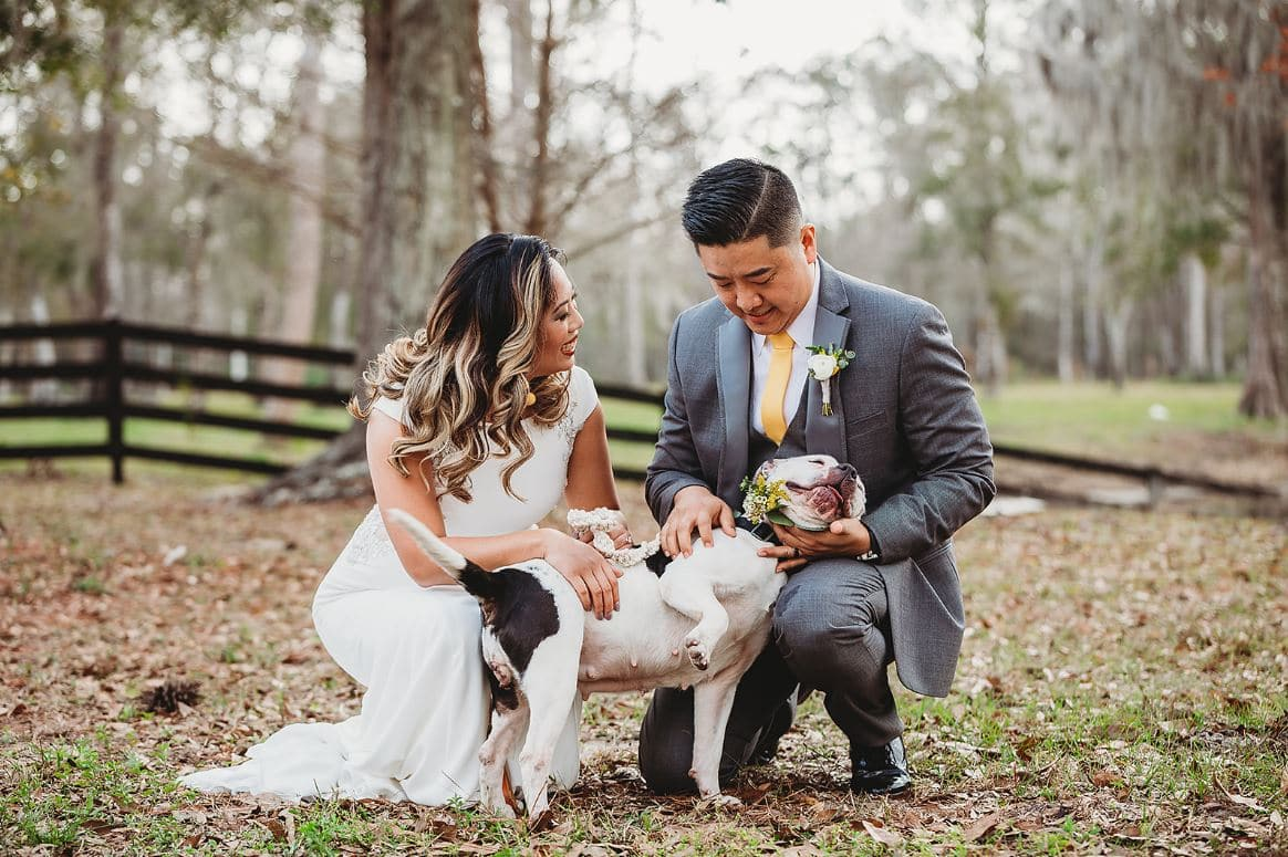 bride & groom with dog outside