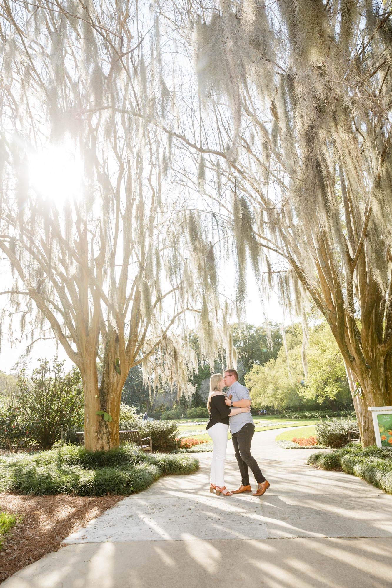 engaged couple stand together kissing outside under two grand trees covered in moss