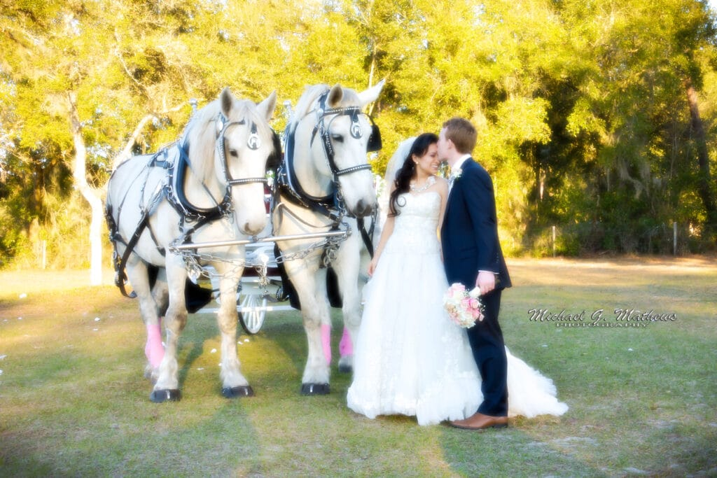 groom kissing bride on the forehead while standing next to a horse drawn carriage