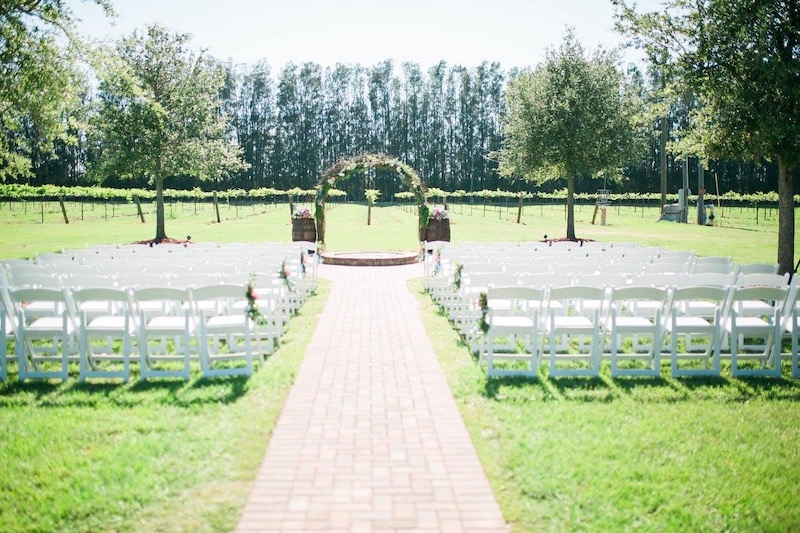 outdoor wedding ceremony on a bright sunny day on a vineyard