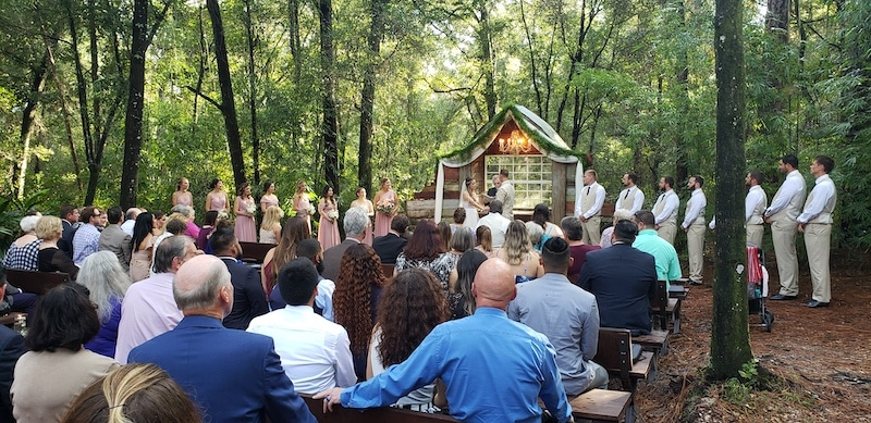 guests watch as bride and groom getting married during ceremony in the woods