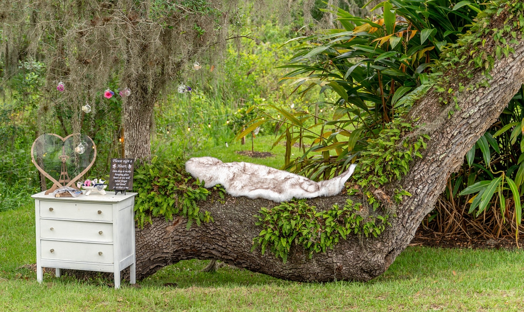 dresser sits outside with heart shaped structure on top and sign in front of large unique shaped tree branch with a piece of material sitting on it