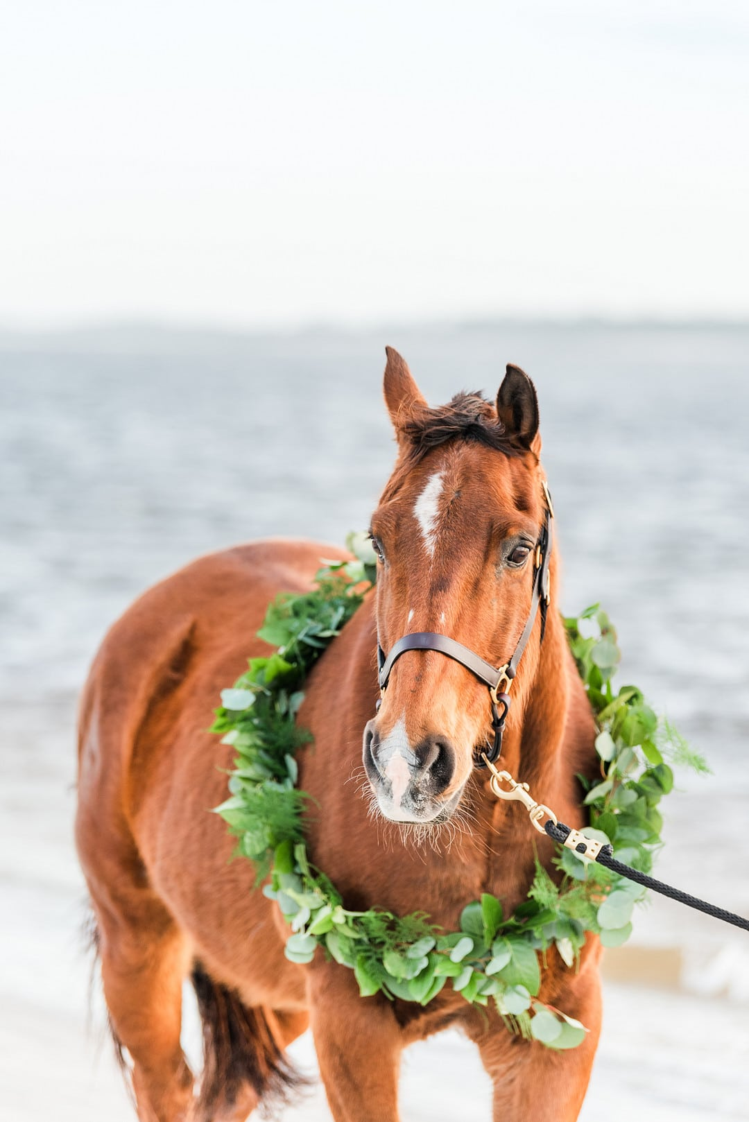 Romantic, Spring Styled Wedding with Horses on the Beach_Christine Austin Photography_©christineaustinphotography_2021_RomanticBeachStyledShoot_Horses_66_low