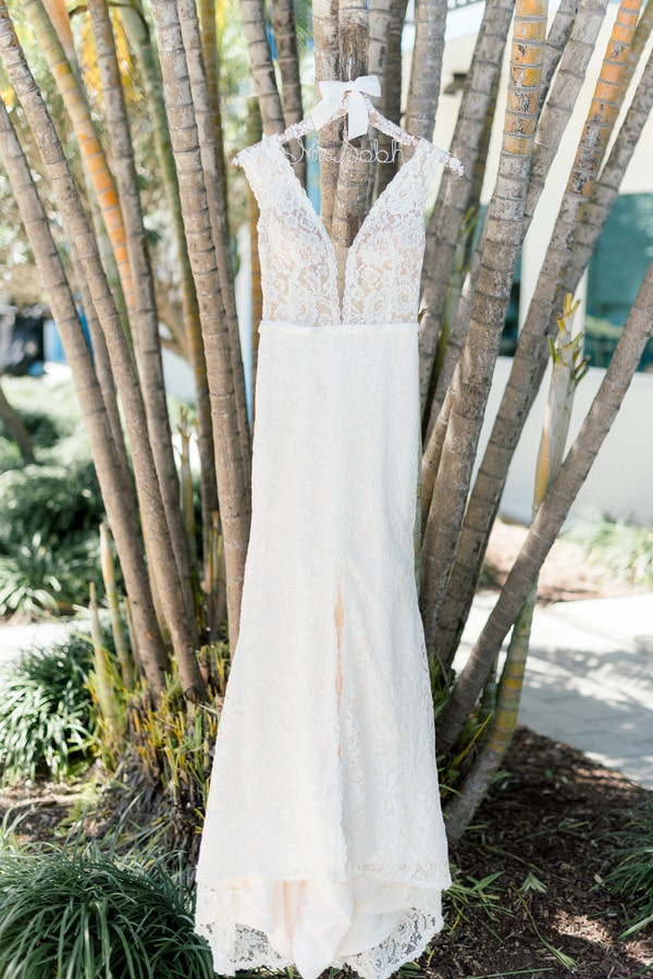 the bride's wedding dress hanging in a tree before the st petersburg beach wedding