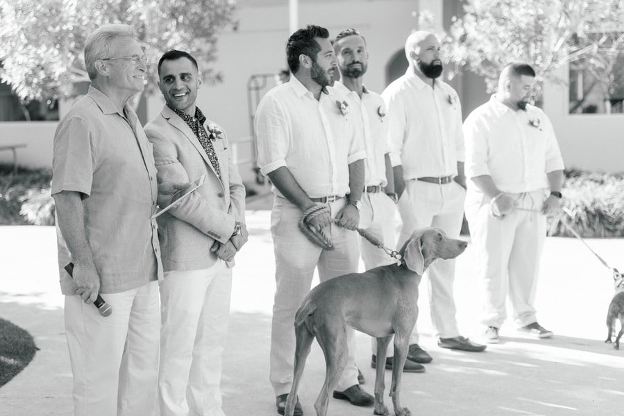 the groom, groomsmen, dog, and officiant waiting for the bride to walk down the aisle for the st petersburg beach wedding
