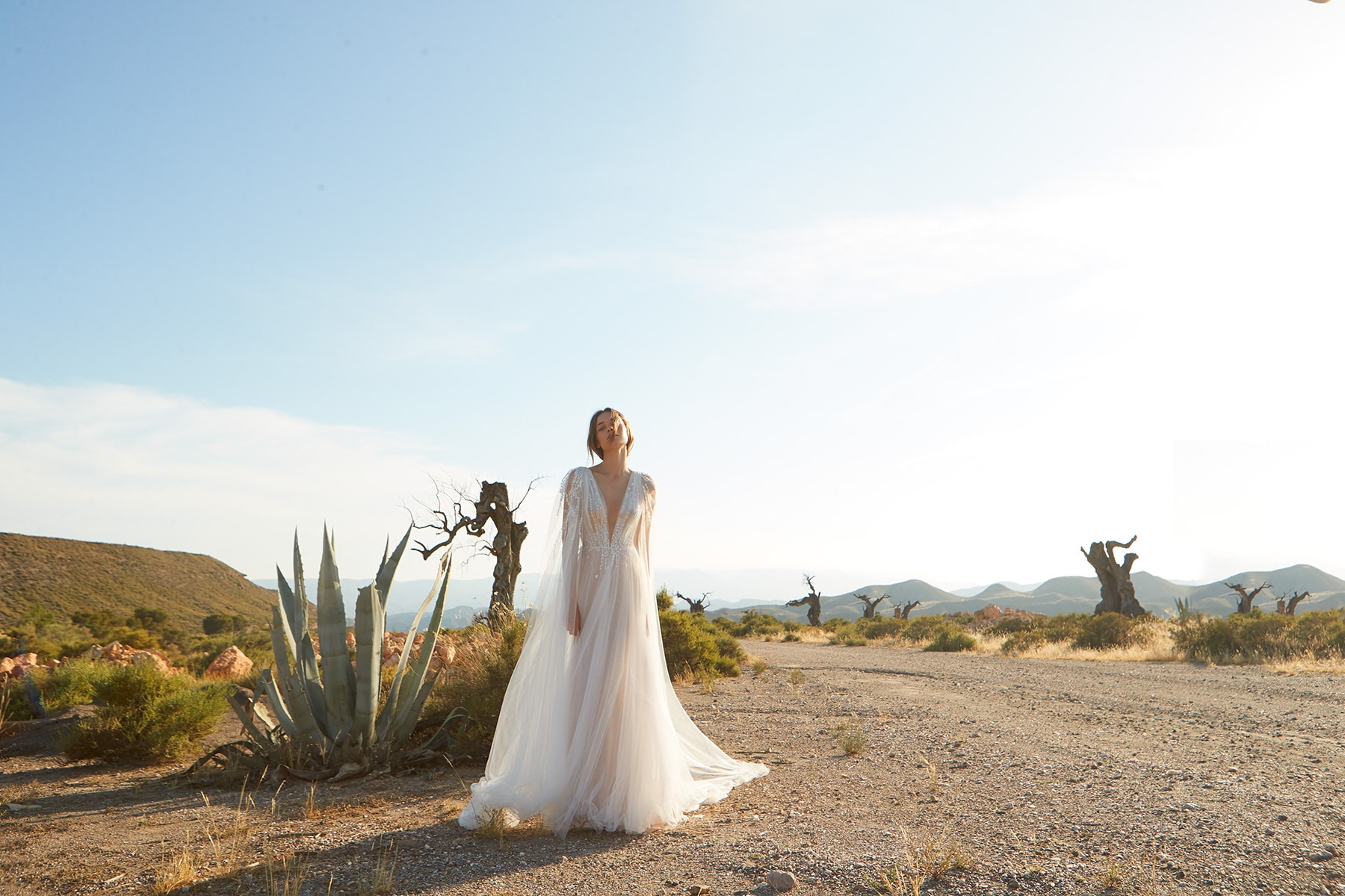 bride in see through dress standing in the desert