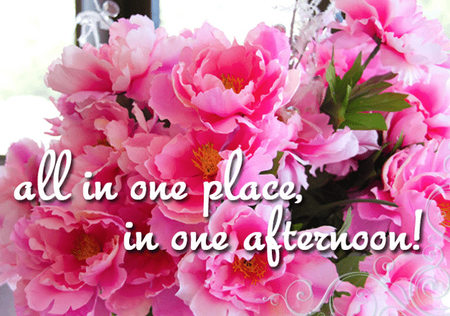 image of flowers with text that says all in one place in one afternoon
