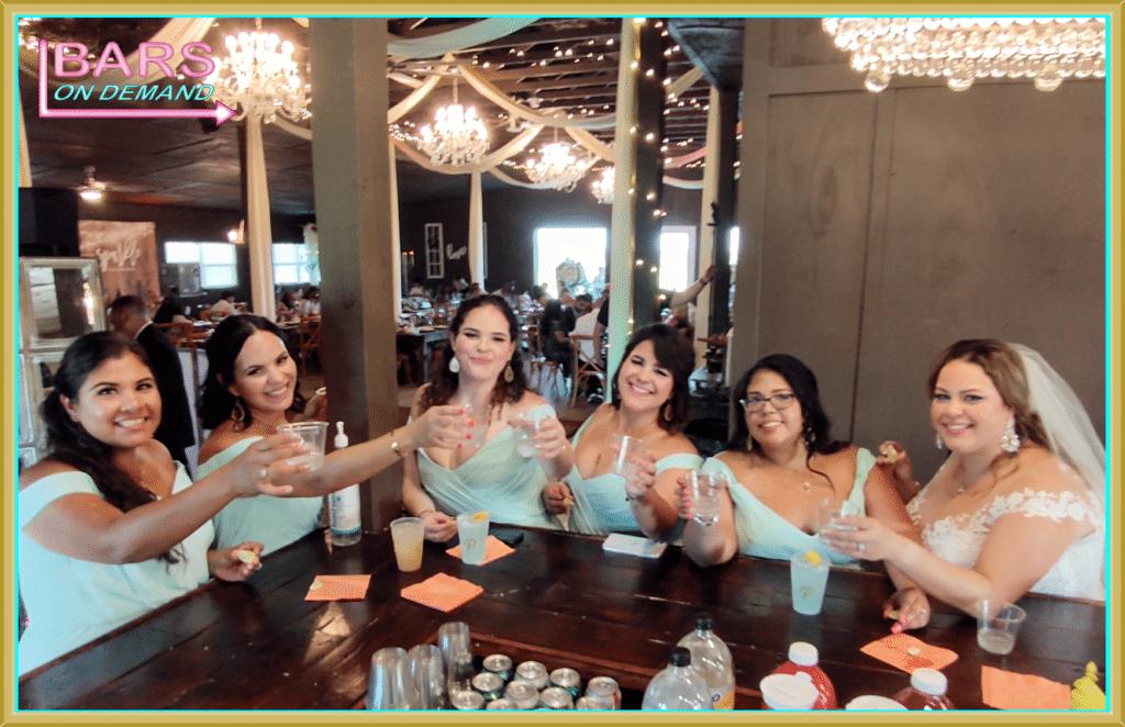 Bridal party at Bars on Demand